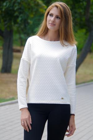 Свитшот молочного цвета  2219|интернет-магазин vvlen.com